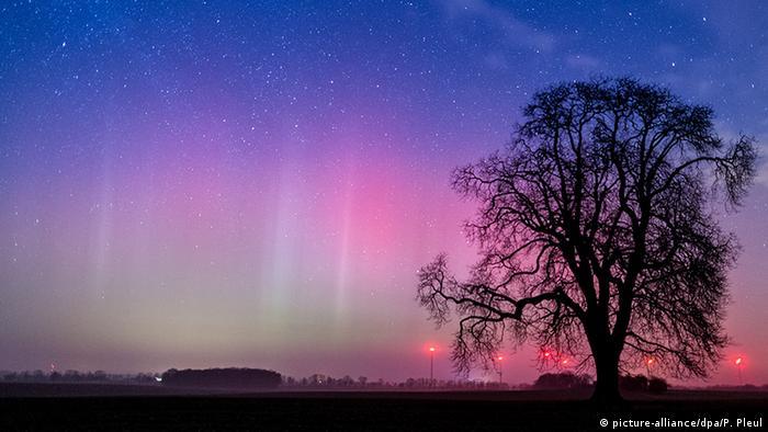 Deutschland Lietzen Polarlicht am Nachthimmel (picture-alliance/dpa/P. Pleul)