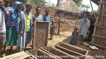 Bees for Development Ethiopia