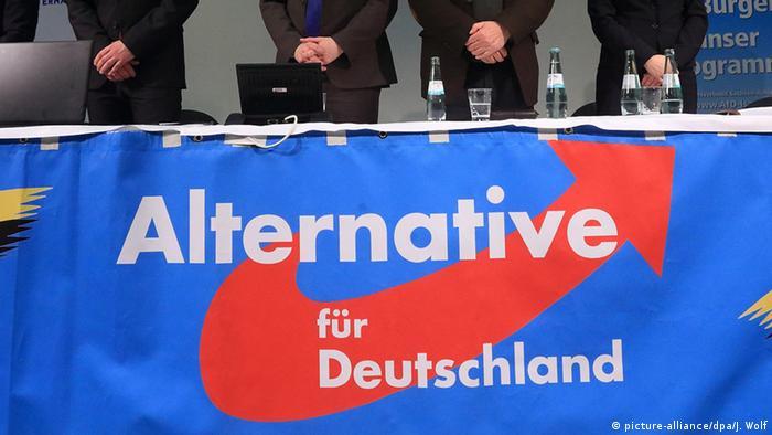 Deutschland Wahlkampf Sachsen-Anhalt AfD Wahlkampfabschluss (picture-alliance/dpa/J. Wolf)