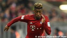 Deutschland Fußball 1. Bundesliga, Bayern München - Werder Bremen
