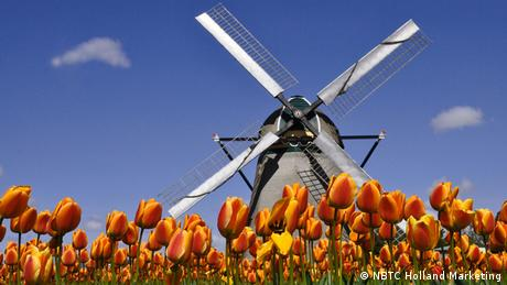 Niederlande Windmühle und Tulpen (NBTC Holland Marketing)