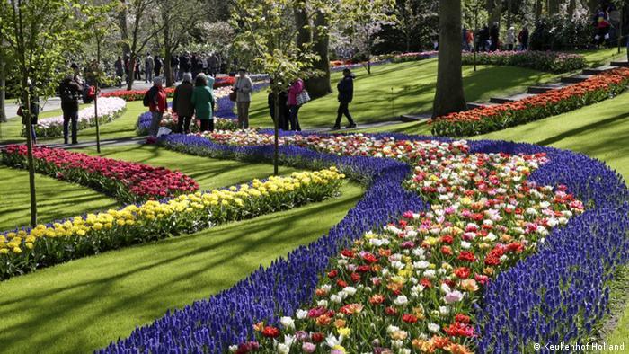 Niederlande Beete mit blauen Rändern