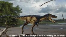 ***ACHTUNG: Nur zur einmalilgen aktuellen Berichterstattung übder das genannte Ereignis.*** 14.3.2016 *** Handout illustration shows a life reconstruction of the new tyrannosaur Timurlengia euotica in its environment 90 million years ago A life reconstruction of the new tyrannosaur Timurlengia euotica, accompanied by two flying reptiles (Azhdarcho longicollis) in their environment 90 million years ago, is pictured in this undated illustration released on March 14, 2016. REUTERS/Original painting by Todd Marshall/Proceedings of the National Academy of Sciences/Handout via Reuters ATTENTION EDITORS - THIS PICTURE WAS PROVIDED BY A THIRD PARTY. REUTERS IS UNABLE TO INDEPENDENTLY VERIFY THE AUTHENTICITY, CONTENT, LOCATION OR DATE OF THIS IMAGE. FOR EDITORIAL USE ONLY. NOT FOR SALE FOR MARKETING OR ADVERTISING CAMPAIGNS. THIS PICTURE IS DISTRIBUTED EXACTLY AS RECEIVED BY REUTERS, AS A SERVICE TO CLIENTS. NO RESALES. NO ARCHIVE Copyright: Reuters/Todd Marshall/National Academy of Sciences