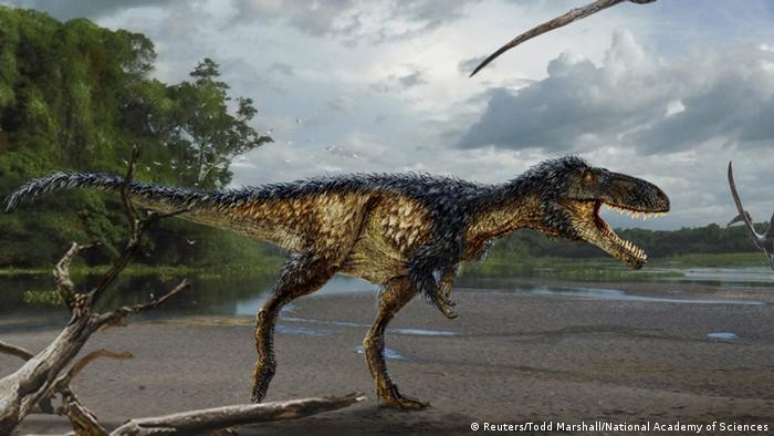 Illustration T-Rex Timurlengia Euotica