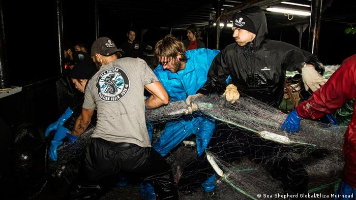 Sea Shepherd crew onboard of the 'Steve Irwin' retrieves an abandoned driftnet (Picture: Sea Shepherd Global/Eliza Muirhead)