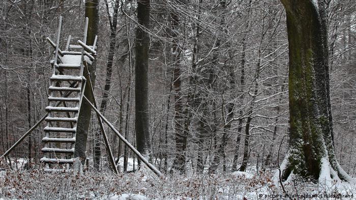 schneebedeckter Jägerhochsitz Spessart Deutschland