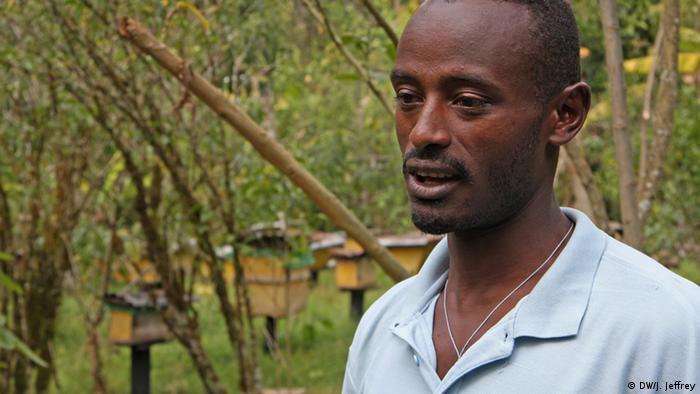 Äthiopien: Kaffee-Anbau (Foto: James Jeffrey/DW)