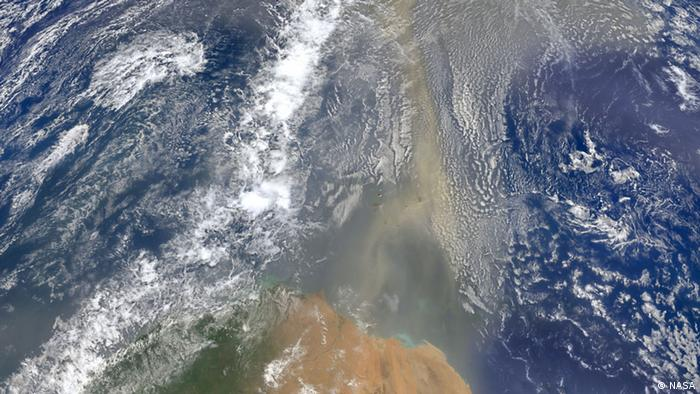 Satellite image shows dust from the Sahara over the Atlantic (Picture: NASA)