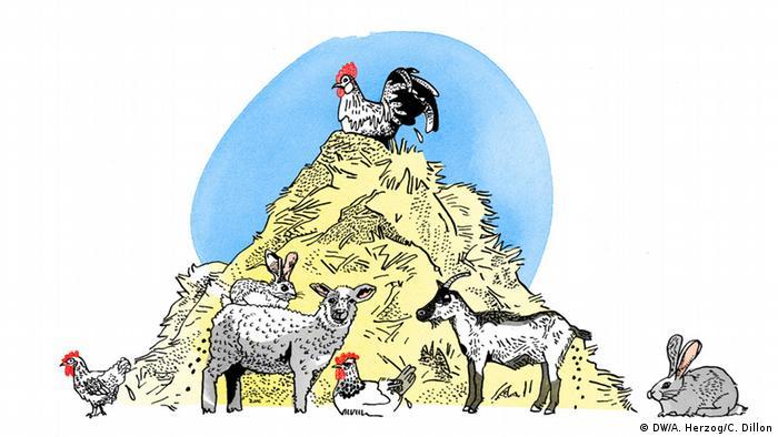 Kleinvieh macht auch Mist, Ilustration, Copyright: DW/ A. Herzog, C. Dillon