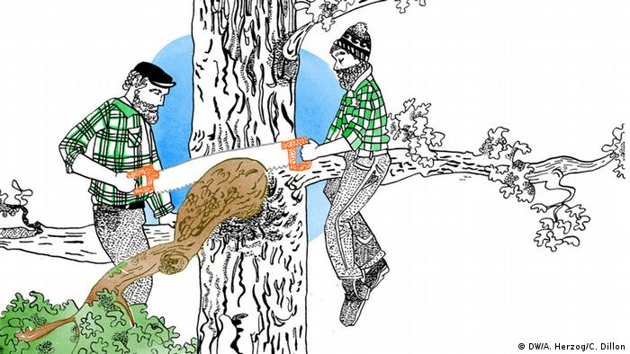 Man sägt nicht den Ast ab, auf dem man sitzt, Illustration, Copyright: DW/A. Herzog, C. Dillon