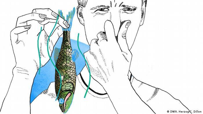 Der Fisch stinkt vom Kopf her, Illustration, Copyright: DW / A. Herzog, C. Dillon