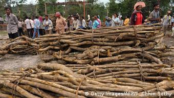 Kambodscha Abholzung der Wälder