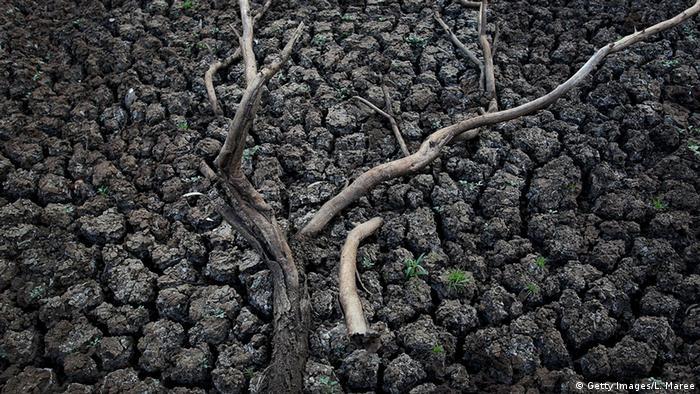 İklim değişiyor: Hayatlarımız tehlikede