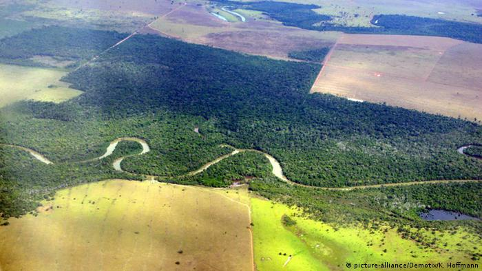 Aerial view of deforestation in the state of Mato Grosso (big forest), Brazil