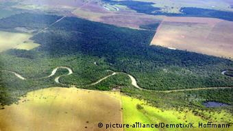 Brazilian deforestation, Mato Grosso region (picture-alliance/Demotix/K. Hoffmann)
