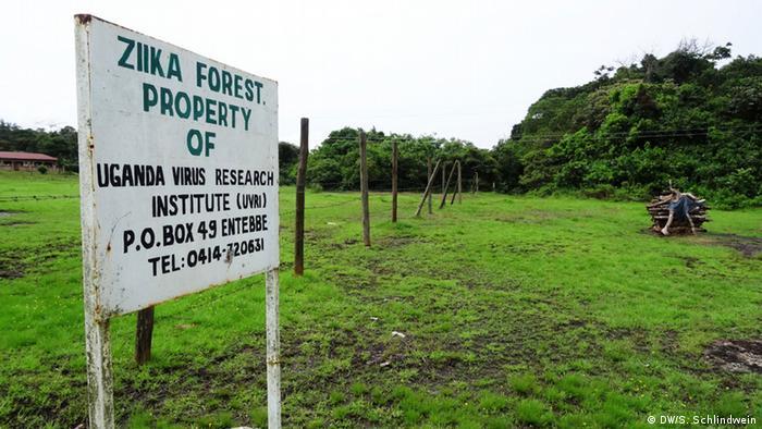 Floresta de Zika em Entebbe, local que deu nome ao vírus