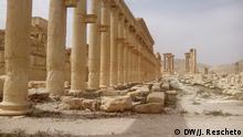 Die syrishe Armee hat die historische Stadt Palmyra wieder in ihre Hand. DW-Reporter Juri Rescheto hatte die Gelegenheit sie zu besuchen. Copyright: DW/J. Rescheto