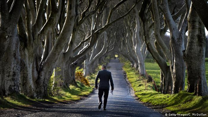 Irland Dark Hedges (Getty Images/C. McQuillan)