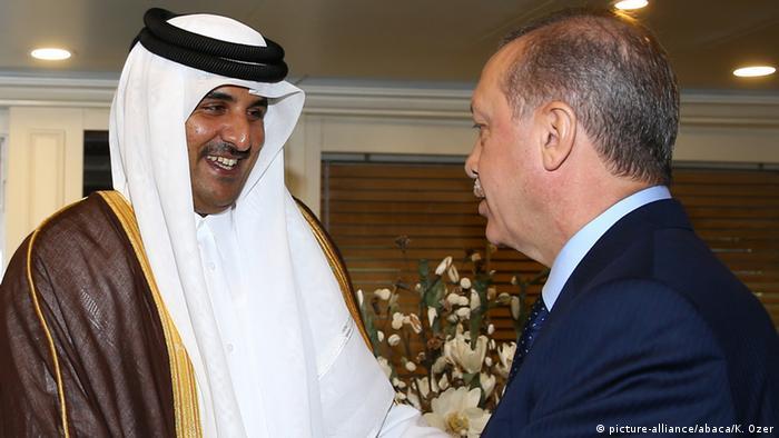 Türkei Gipfeltreffen der Organisation für Islamische Zusammenarbeit in Istanbul (picture-alliance/abaca/K. Ozer)