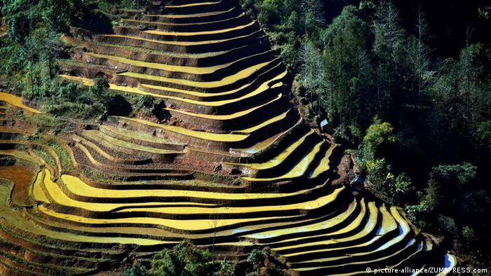 Terrace agriculture in Yunnan, China (picture-alliance/ZUMAPRESS.com)
