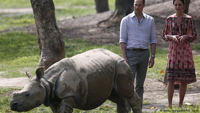 Britain's Prince William and Catherine, Duchess of Cambridge, look at young rhino at the Centre for Wildlife Rehabilitation and Conservation (CWRC) at Panbari reserve forest in India's Assam state