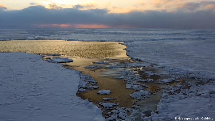 Spitzbergen Meereis (Foto: DW)