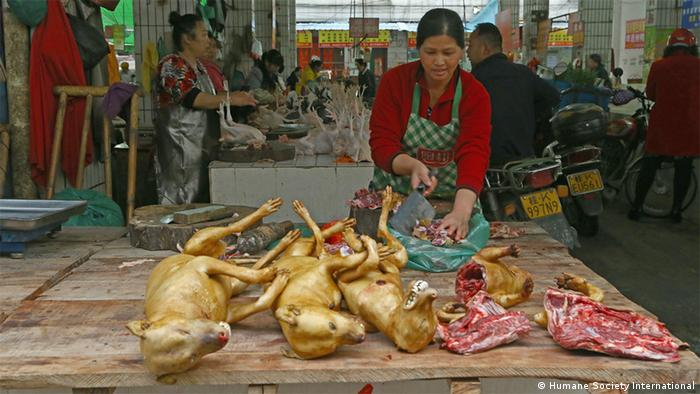 Yulin dog meat festival, China (Picture: Humane Society International)