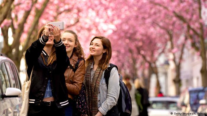 Deutschland Bonn Kirschblüten Kirschbäume Kirschblüte