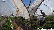 Griechenland Peloponnes Touristenkomplex Flüchtlingslager Erdbeerplantage