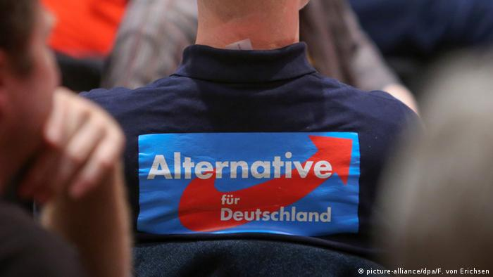 Member of AfD with banner on back (picture-alliance/dpa/F. von Erichsen)