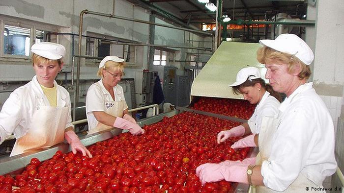 Podravka , Lebensmittelproduktion