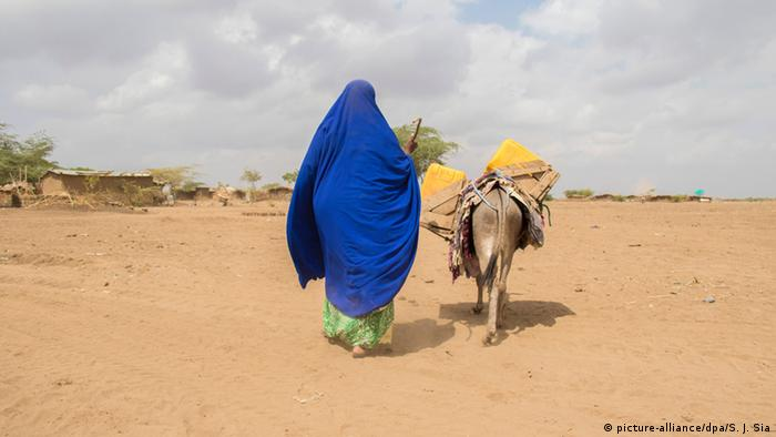 A girl in a blue veil and her donkey walk across a parched stretch of land