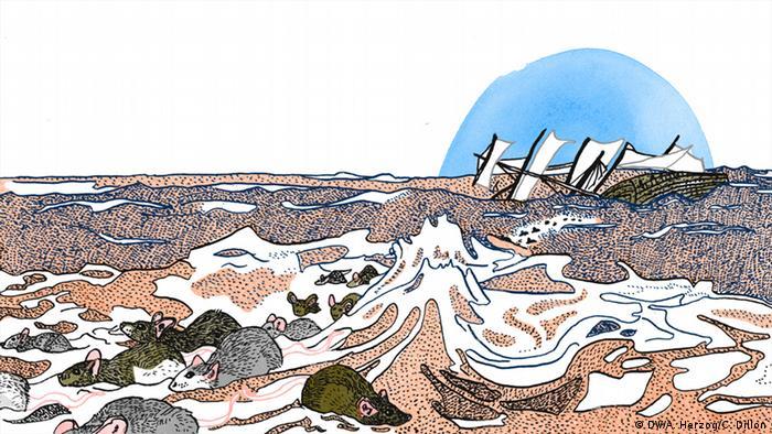 Illustration Sprichwort Die Ratten verlassen das sinkende Schiff © DW/A.Herzog/C.Dillon