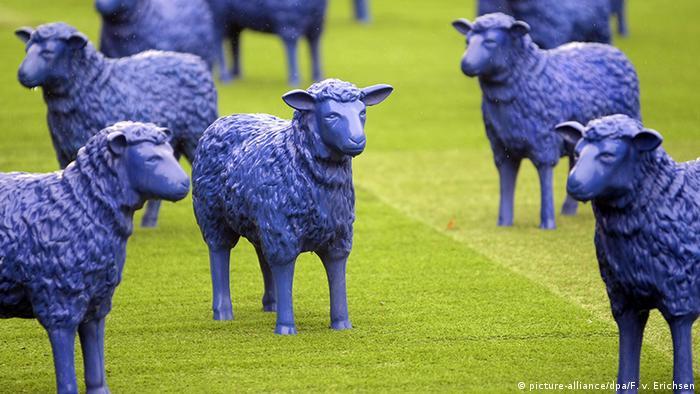Овцы в Тюрингии