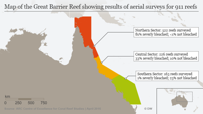 Infographic Great Barrier Reef bleaching