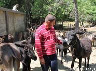 Može se dobro živjeti i u društvu s magarcima