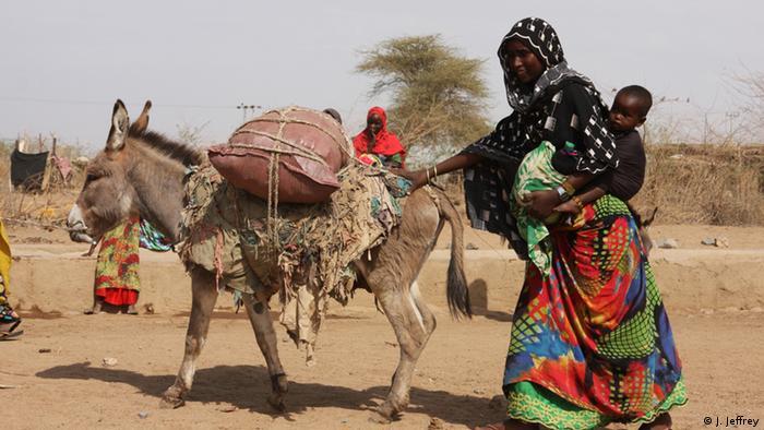 Somali Äthiopien Shinile-Zone Dürre erschwert Lebensbedingungen