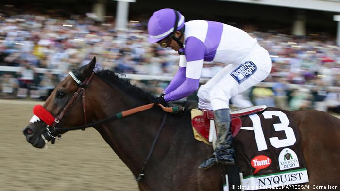 Kentucky Derby Pferderennen Nyquist