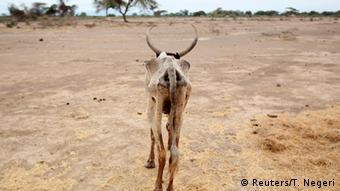Äthiopien Dürre in Gelcha
