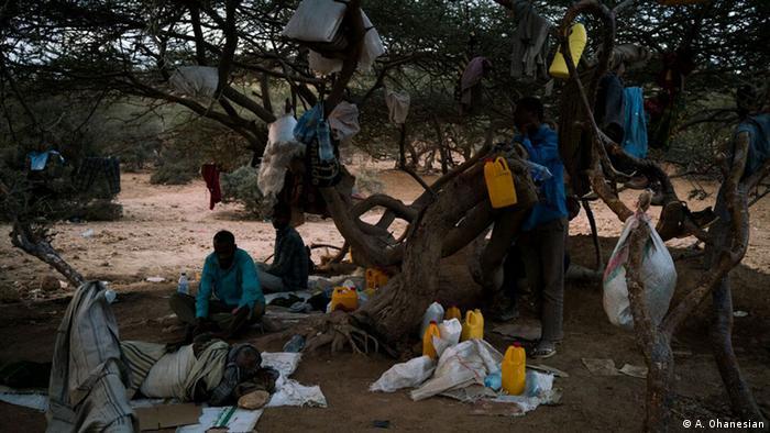 Äthiopische Migranten leben unter einem Baum in Obock, Dschibuti, Foto von Adriane Ohanesian