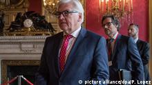 Frank-Walter Steinmeier in Paris