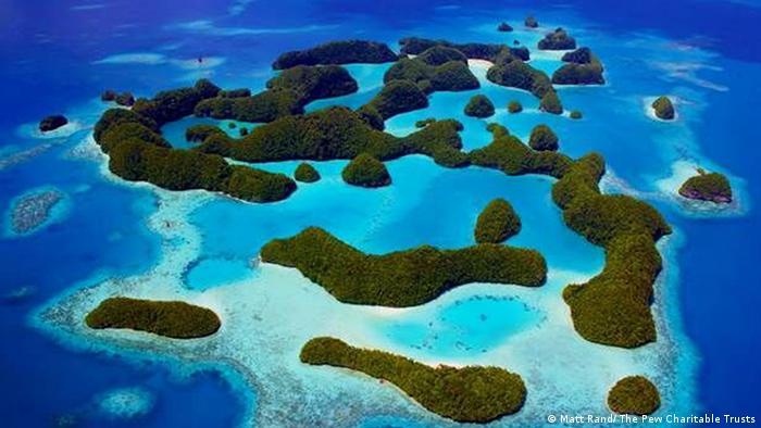 El pequeño estado isleño de Palau ha designado el 80 por ciento de sus aguas como una zona de veda.