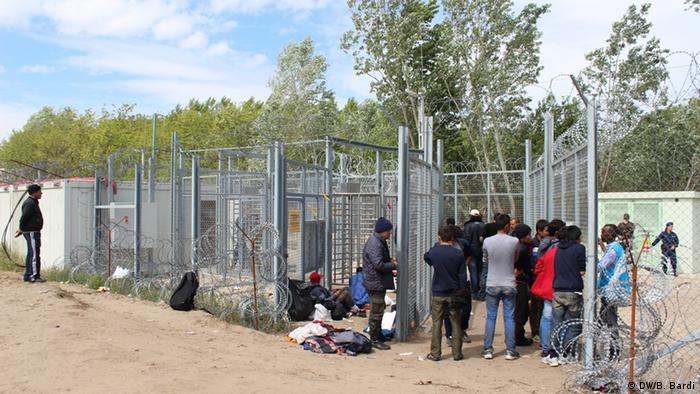 Asylum-seekers crowd at teh gate to the transit zone at Röszke