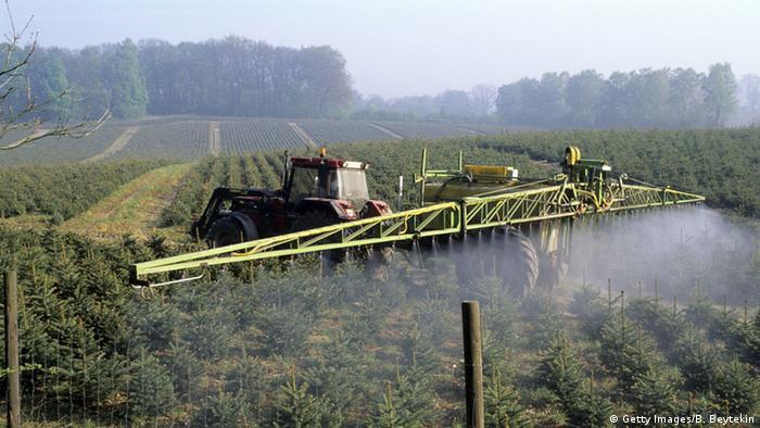 Deutschland Traktor Unkrautbekämpfung Fichten Monokultur Herbizid