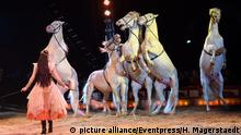 Deutschland Weltpremiere Evolution des Circus Krone in München