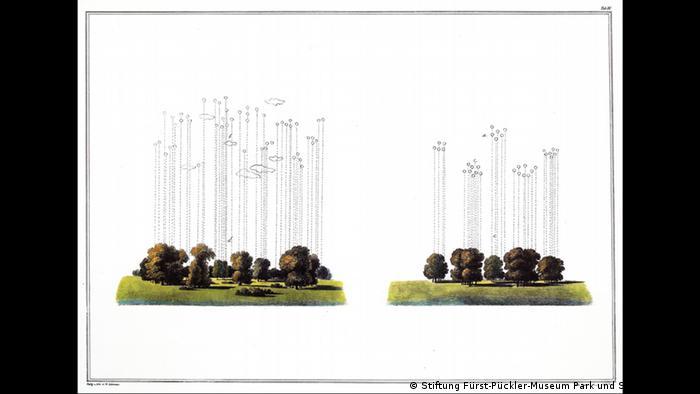 Gezwungen gepflanzte Baumgruppe Natürlich gepflanzte Baumgruppe Landschaftsgärtnerei
