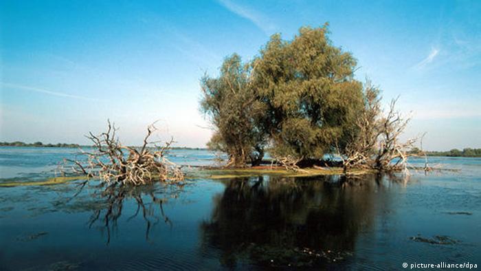 Delta Dunării (picture-alliance/dpa)