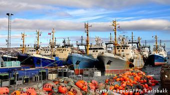 Barentssee Fischfangschiffe (Getty Images/AFP/J. Karlsbakk)