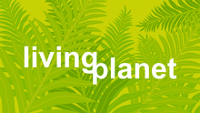 Themenbild Living Planet
