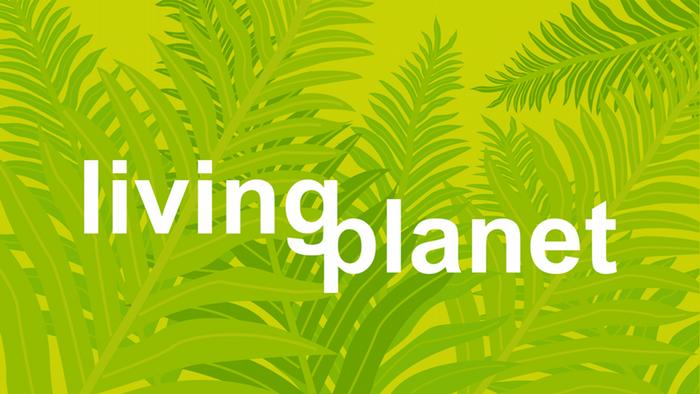 Themenbild Living Planet